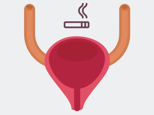 سرطان المثانة ،الجميع يعلم كيف يدخل الدخان الى الجسم، لكن كيف يخرج منه و ما هو المرض الخطير الذي يسب