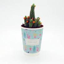Pot Motif Cactus