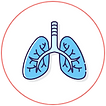 lung_2x.png