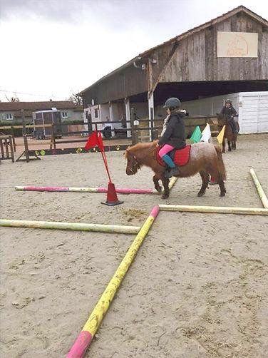 Les après-midi poneys