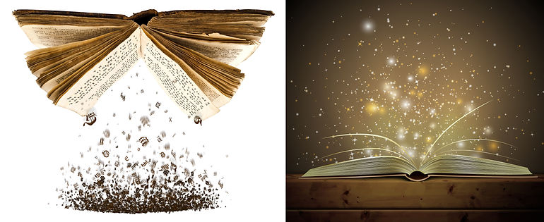 Book Crap-shine.jpg