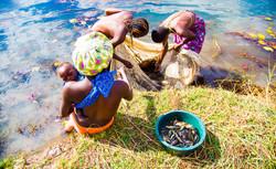 Kapenta Ladies on the Okavango