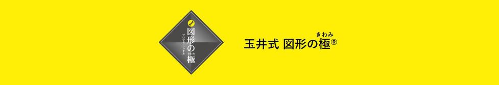 玉井式 図形の極.png