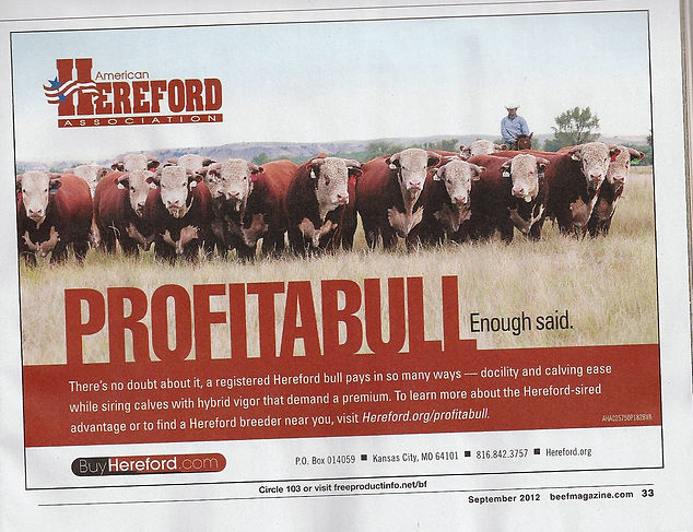 Kolby Van Newkirk as the face of the Natioanl Hereford Association Ad Campaign