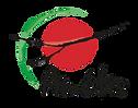 Logo Amétis.png