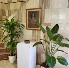 Taino Installation
