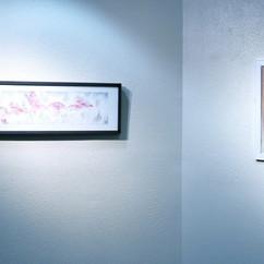Exhibition View (Jason Taylor, Scott Ferguson)