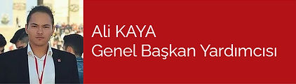 Ali Kaya.jpg