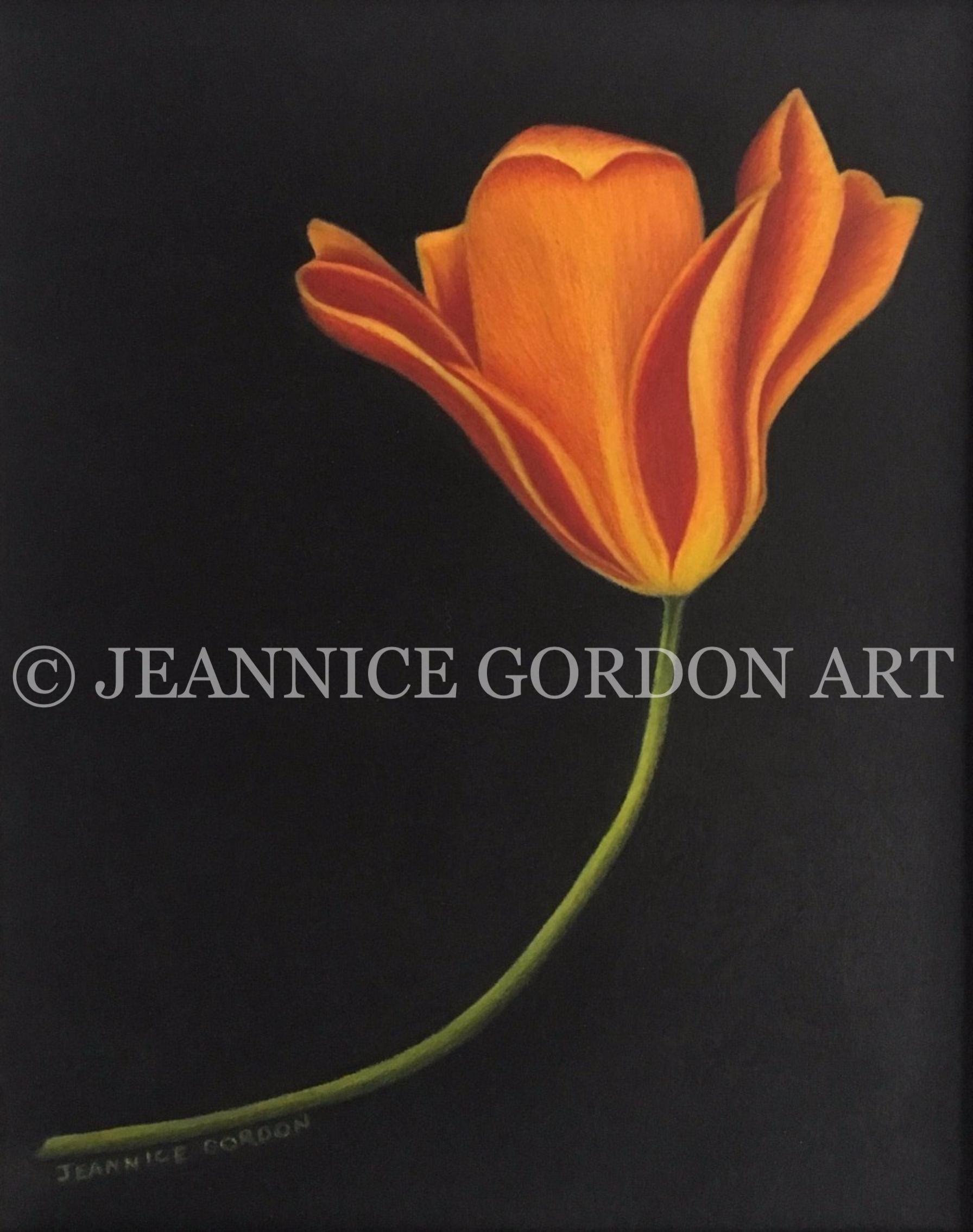 Watercolor tulip with CP_edited_edited_e