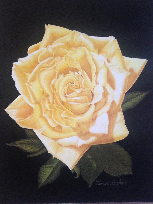 Julie's Yellow Rose - Print