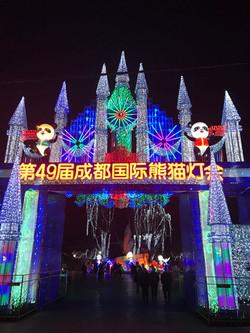 熊猫灯会8