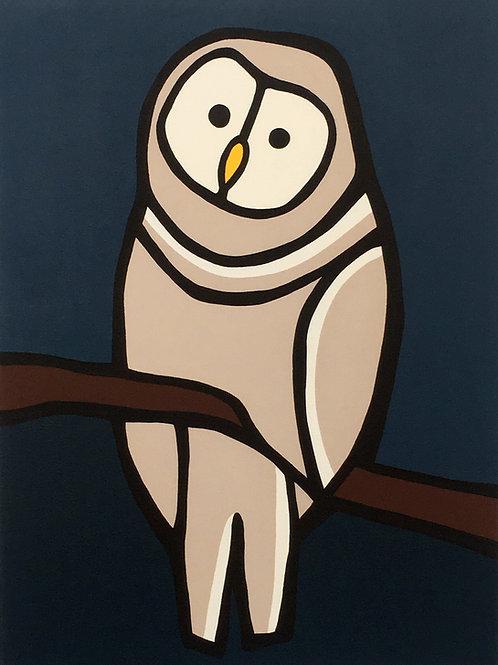 "Barred Owl    •      18"" x 24"""