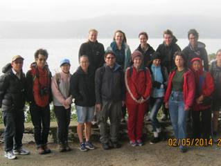 Wildlife Trip to Somes Island