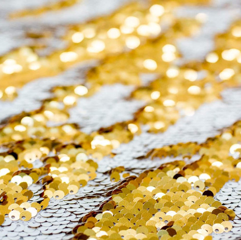 Gold and Silver Sequin Photo Booth Backdrop