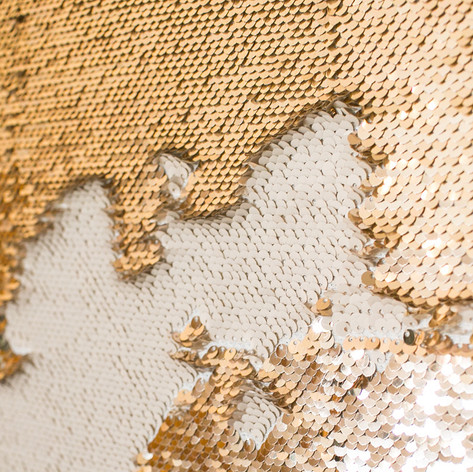 Gold and gold sequin backdrop