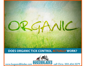 #organictickcontrol #naturaltickproducts #garlic #fairfieldcounty #wilton #weston #westport #fairfield #bugsandblades
