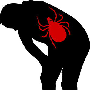 tick spraying service, natural tick control, Pest control,