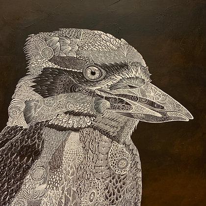 Kookaburra Modellato