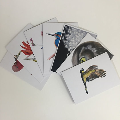 Gift Cards - Mixed Pack
