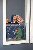 Fish tank Lyndoch Living.jpg