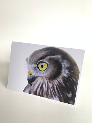 Gift cards - Prophecy - Barking Owl