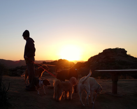 Alan Cueba hiking with dogs at Rocky Peak.