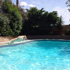 Pool and play area-San Fernando Valley Dog Boarding