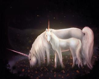 Unicorn Babycorn 2.png