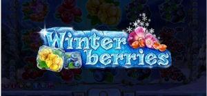 Winterberries.jpg