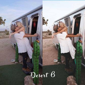 DESERT 6 - BEFORE vs AFTER.jpg
