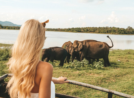 Here are your 12 absolute must dos in Sri Lanka