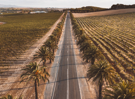 A full 4 day road trip itinerary across South Australia, top things to do and places to visit
