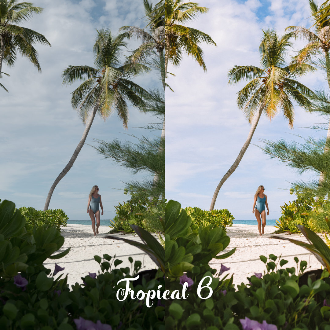 TROPICAL 6 - BEFORE vs AFTER.jpg