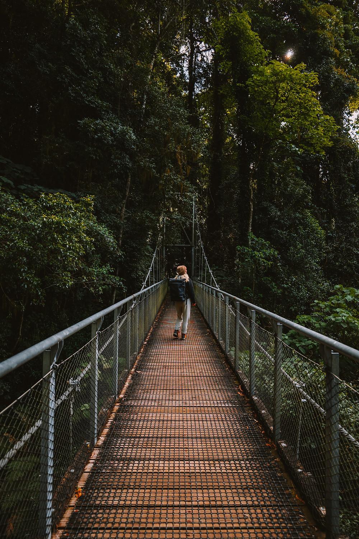 Girl on swing bridge in Crystal shower falls Dorrigo national park