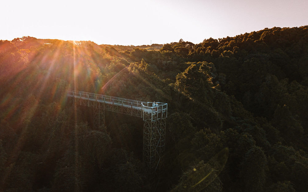 Drone view of Skywalk in Dorrigo national park with couple