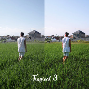 TROPICAL 3 - BEFORE vs AFTER.jpg