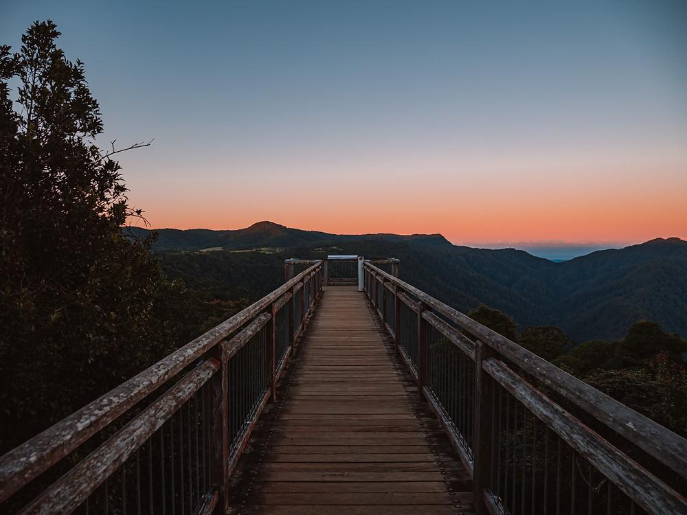 Skywalk view at sunset in Dorrigo National Park