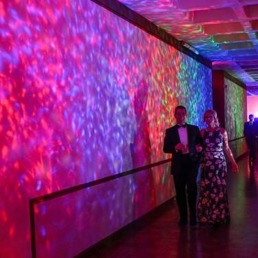 2017 Huntington Museum of Arts Ball