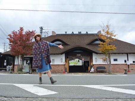 和歌山|電鐵貴志川線  貓咪小玉站長生日快樂