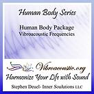 Human_Body_VAT.png