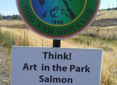 Salmon Booth at Art in the Park
