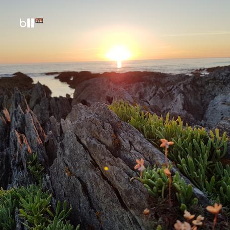 Barricane Sunset