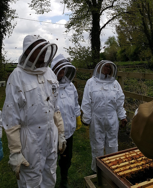 Beekeepers in the making