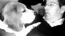 Chi siamo per il nostro cane ? Il nostro ruolo è alla base di una convivenza felice.