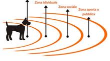 Cos'è la bolla prossemica?