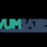 Logo - HWUMSA (Colored).png