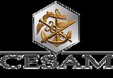 Logo-Cesam-300.png