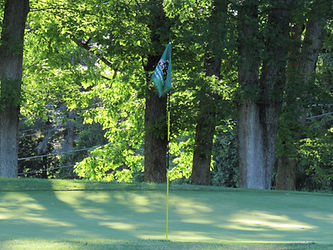 Foxburg Country Club hole six green