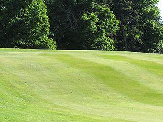 Foxburg Country Club Hole One Green