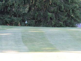 Foxburg Country Club Hole Three Green